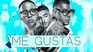 Download Baby Rasta y Gringo x Maluma - Me Gustas Video