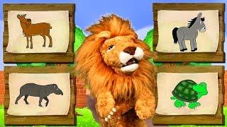 Download Canciones Infantiles del Zoo - El León Lorenzoo nos presenta a los animales - Videos Educativos # Video