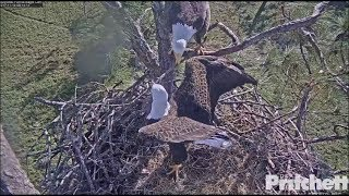 Download SWFL Eagles ~ Let The Fun Begin ~ Where To Put The Stick; M Nips Mom's Head 11.14.17 Video