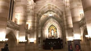 Download A tour of the Yale University library Video