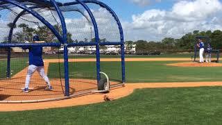 Download Mets' Noah Syndergaard throws live BP Video