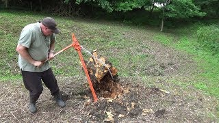 Download Pulling up a Large Old Stump with a Farm Jack Video