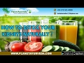 Download How to Detox Or Cleanse Your Kidneys Naturally? Video