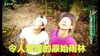 Download 【馬來西亞】追逐洋芋片的雨林混血兒【週三愛玩客】20180815賴東賢、Jason EP322 Video