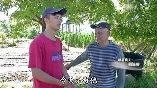 Download 【農夫與他的田】20170804 - 峨眉小農的這一季 Video