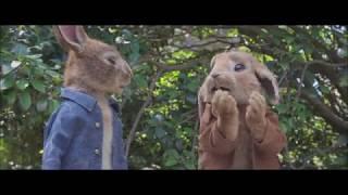Download Peter Rabbit - Clip dal film ″Talenti″   Dal 22 marzo al cinema Video