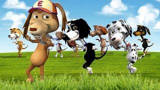 Download El Perro Chocolo y la canción de los 10 perritos Video