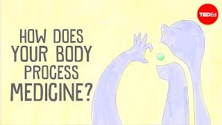 Download How does your body process medicine? - Céline Valéry Video