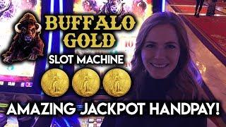 Download AMAZING ✦ Buffalo Gold ✦ HANDPAY! ✦ JACKPOT WIN!!! Video