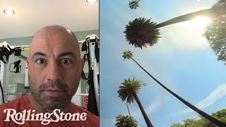 Download Joe Rogan: A Day (or So) in the Life of UFC's Funniest Guy Video
