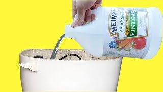 Download If You Put Vinegar in Your Toilet Tank And Flush After 10 Minutes This Happens Video