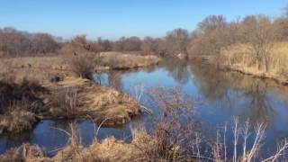Download Silver Lake Nature Center Walk (Natural Sounds of Nature): Thursday 02-23-2017 Video