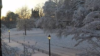 Download Snow Covers Abele Quad Time-lapse Video