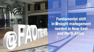 Download Fundamental shift in drought management needed in Near East and North Africa Video