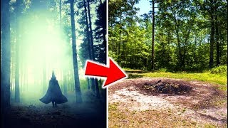 Download 9 Mysterious Forests You Don't Want To Get Lost In Video