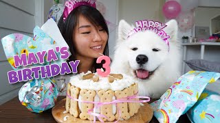 Download My Dog's EXCITING Third Birthday!!! [With DIY Dog Birthday Cake Recipe] Video
