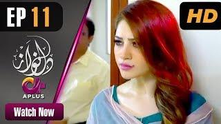 Download Drama   Dil Nawaz - Episode 11   APlus ᴴᴰ Dramas   Neelam Muneer, Aijaz Aslam, Minal Khan Video