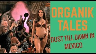 Download Organik TALE: death till 4some!!! In MEXICO Video