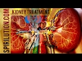 Download ★Kidney Function Repair, Cleanser & Rejuvenator ★ Frequencies Subliminals - Quadible Integrity Video