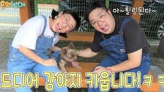 Download 드디어 강아지키우다?!?기분좋아지는 힐링영상!!!ㅋㅋㅋㅋㅋㅋㅋㅋㅋㅋㅋㅋㅋ(흔한남매) Video