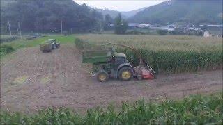 Download 신광목장 옥수수사일리지 작업 Video