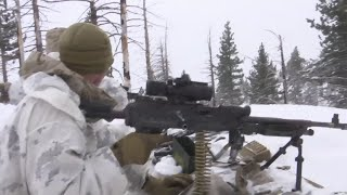 Download Marines train in climate that mimics Russia, Korea Video