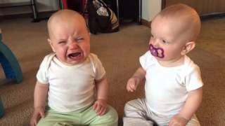 Download Twin baby girls fight over pacifier Video