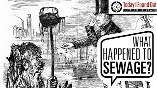 Download The Great Stink of 1858 Video