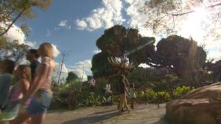 Download New Footage from Inside Pandora: The World of AVATAR - Disney's Animal Kingdom Video
