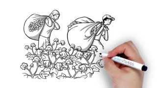Download Cotton Crimes: forced labour in Uzbekistan's cotton industry Video