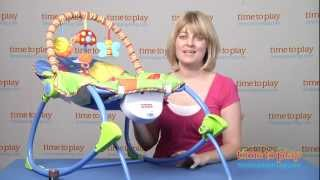 Download Infant-to-Toddler Rocker from Fisher-Price Video