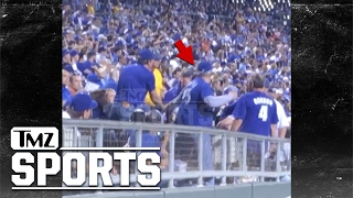 Download KC Royals Fan Punches Woman After She Allegedly Hits and Spits On Him | TMZ Sports Video