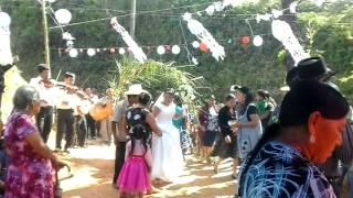 Download boda en Huautla d Jimenez Oaxaca Video