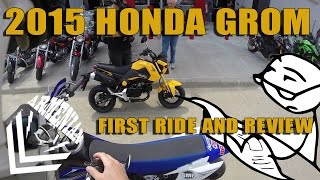 Download 2015 Honda Grom First Ride and Review Video