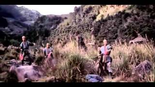 Download Fearless Fighters (1973) Video