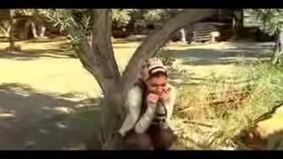 Download Güven Ismet YENI Video