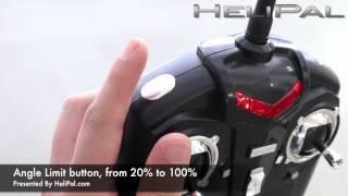 Download HeliPal - WL V929 Mini Beetle Test Flight Video