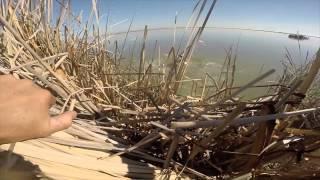 Download California Snow Goose Hunting Video