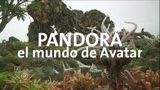 Download Pandora en 4K, el mundo de AVATAR en Disney | Alan por el mundo Video