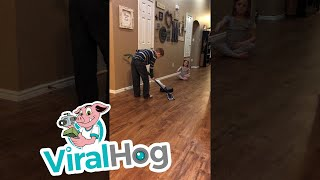 Download A New Style of Curling || ViralHog Video