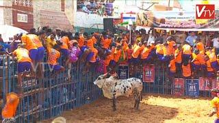 Download மாடு பிடி வீரர்களை தெறிக்கவிட்ட புதுக்கோட்டை காவல் ஆய்வாளர் காளை மாடு | Avaniyapuram jallikattu 2020 Video