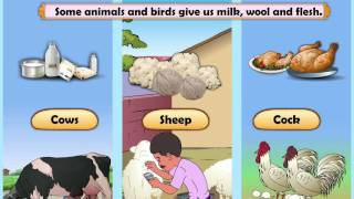 Download Learn Grade 2 - EVS - Natural Resources Video