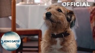 Download Absolutely Anything - Clip ″Dog Talking″ - Own On DVD Now Video