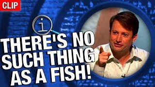 Download QI - No Such Thing As A Fish Video