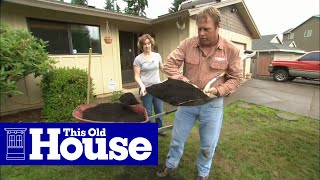Download How to Fix a Patchy, Weedy Lawn | This Old House Video