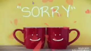 Download Sorry status Video