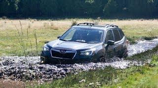 Download Llenamos de lodo al nuevo Subaru Forester │MOTORDRIVE Video