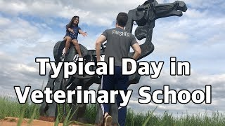 Download Typical Exam Day in Vet School | Vet School Vlog 3.5 Video