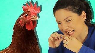 Download Türkler Çin Kümes Hayvanlarını Tadıyor Video