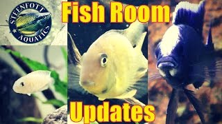 Download More Fish Room Updates - 75 Gallon Planted Aquarium - 55 and 40 Gallon Cichlid Aquarium Video
